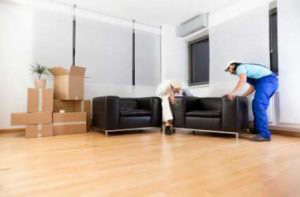 Home Moving Company in Forestville